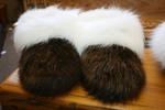 Beaver with white Fox